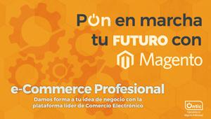 Diseño y desarrollo de Comercio Electrónico