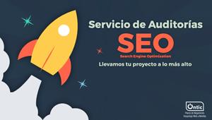Servicio de Auditorías SEO